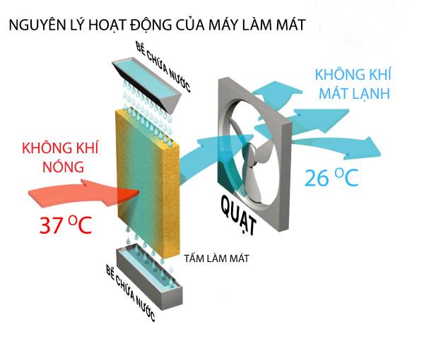 Máy làm mát không khí giảm bao nhiêu độ C ? - ảnh 1