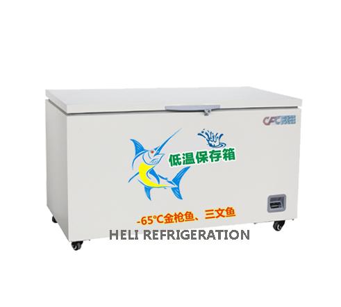 Tủ đông âm sâu Heli DW-60W218