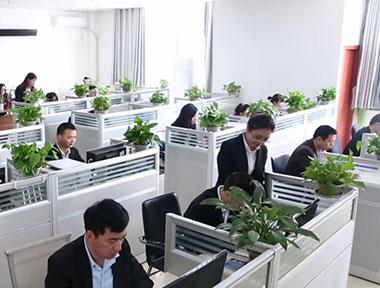 Giới thiệu chung về Công ty và Chính sách nhân sự